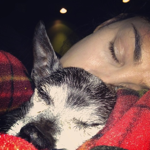 Sarah & Duck via her Instagram @sarahkatesilverman
